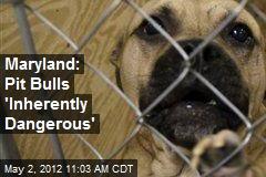 Maryland: Pit Bulls 'Inherently Dangerous'