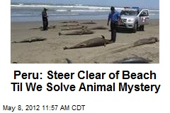 Peru: Steer Clear of Beach Til We Solve Animal Mystery