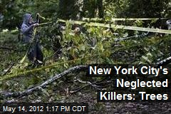 New York City's Neglected Killers: Trees