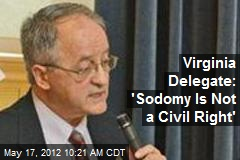 Virginia Delegate: 'Sodomy Is Not a Civil Right'