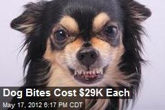 Dog Bites Cost $29K Each