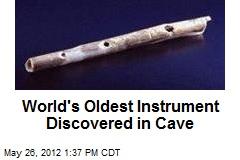 World's Oldest Instruments: Bird Bone Flutes