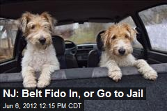 NJ: Belt Fido In, or Go to Jail