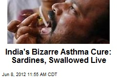 India's Bizarre Asthma Cure: Sardines, Swallowed Live