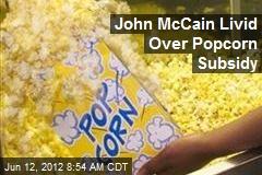 John McCain Livid Over Popcorn Subsidy