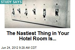 The Nastiest Thing in Your Hotel Room Is...