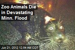 Zoo Animals Die in Devastating Minn. Flood