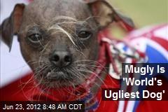 Mugly Is 'World's Ugliest Dog'