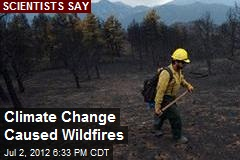 Climate Change Caused Wildfires