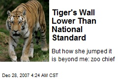 Tiger's Wall Lower Than National Standard