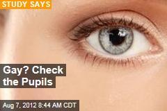 Gay? Check the Pupils
