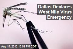 Dallas Declares West Nile Virus Emergency