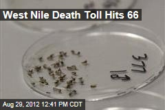 West Nile Death Toll Hits 66