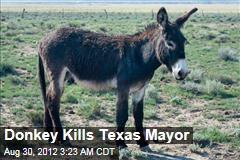 Donkey Kills Texas Mayor