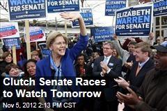 Clutch Senate Races to Watch Tomorrow