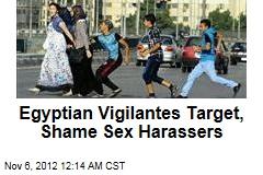 Egypt Vigilantes Aim to Curb Sexual Harassment