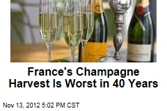 France's Champagne Harvest Is Worst in 40 Years