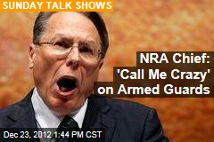 NRA Chief: Assault Gun Ban Is 'Phony Legislation'