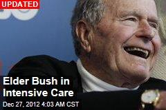 Elder Bush's Fever Breaks