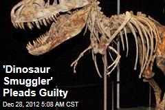 Florida Man Pleads Guilty to Dinosaur Smuggling