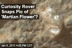 Curiosity Rover Snaps Pic of 'Martian Flower'?