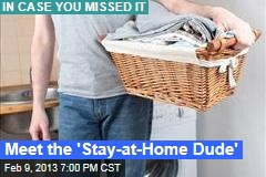 Meet the 'Stay-at-Home Dude'