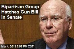 Bipartisan Group Hatches Gun Bill in Senate