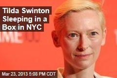 Tilda Swinton Sleeping in a Box in NYC