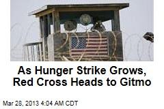Red Cross Heads to Gitmo Amid Hunger Strike