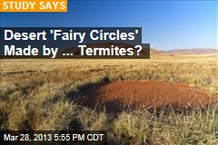 Desert 'Fairy Circles' Made by ... Termites?