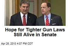 Hope for Tighter Gun Laws Still Alive in Senate