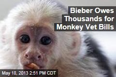 Bieber Owes Thousands for Monkey Vet Bills