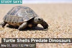 Turtle Shells Predate Dinosaurs