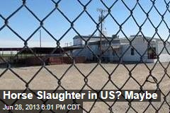 Horse Slaughter in US? Maybe