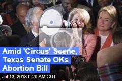 Amid 'Circus' Scene, Texas Senate OKs Abortion Bill