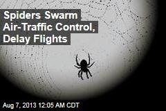 Flights Delayed— Due to Spider Bites