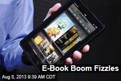 E-Book Boom Fizzles