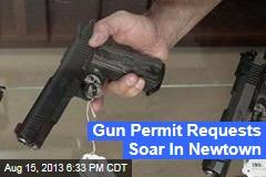 Gun Permit Requests Soar In Newtown