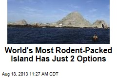 World's Most Rodent-Packed Island Has Just 2 Options