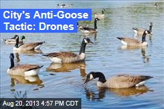 Town's Anti-Goose Tactic: Drones