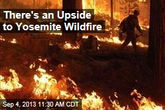 There's an Upside to Yosemite Wildfire