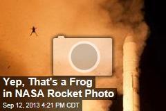 Yep, That's a Frog in NASA Rocket Photo