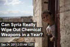 Can Syria Really Wipe Out Chemical Weapons in a Year?