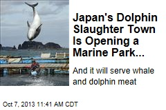 Japan's Dolphin Slaughter Town Is Opening a Marine Park...