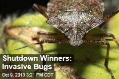 Shutdown Winners: Invasive Bugs