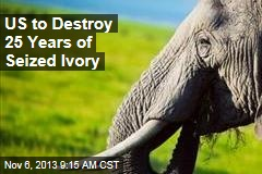US to Destroy 25 Years of Seized Ivory