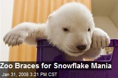 Zoo Braces for Snowflake Mania