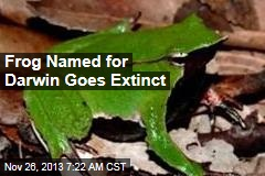 Frog Named for Darwin Goes Extinct