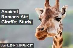 Ancient Romans Ate Giraffe: Study