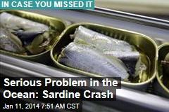 Serious Problem in the Ocean: Sardine Crash